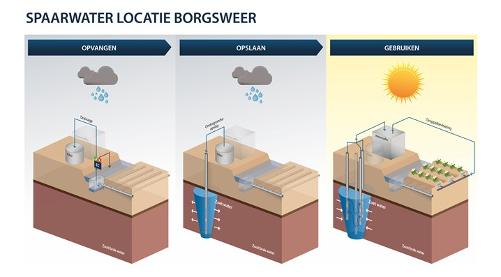 Spaarwater drainagesysteem Borgsweer zonder logo's-01